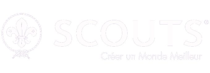 scout int logo